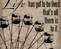 Life has got to be lived