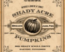 Shady Acre Pumpkins